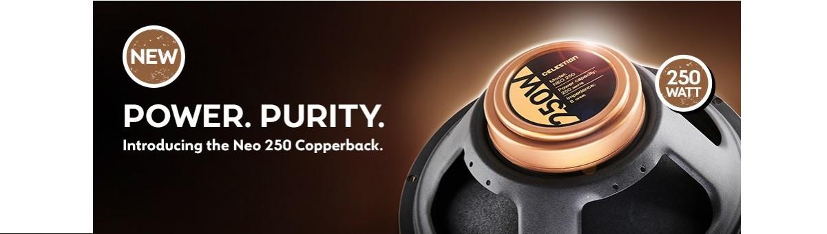 Nuevo Copperback